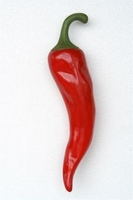decoratie beeld chili peper model 2479 A of B