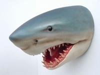 2077 haai