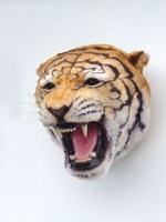 2107 tijger kop