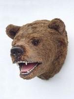 2110 beren kop