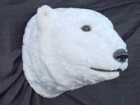 2241 ijsberenkop