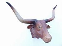 2272 longhorn bull bruin