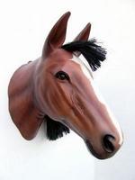 2303 paardenhoofd