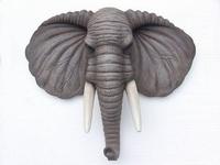 2306 olifantenkop