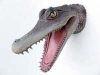2331 aligator kop
