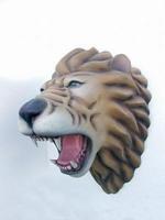 2332 leeuwen kop