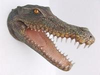 2333 krokodillenkop